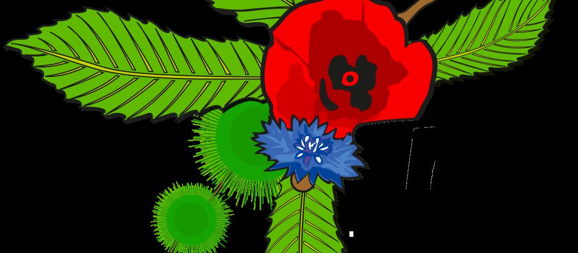 miniature-logo-halle-bio-tain-tournon